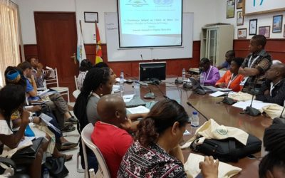 """Projeto Othukumana II na Conferência """"O Bem-Estar das Crianças e dos Adolescentes em Moçambique"""""""