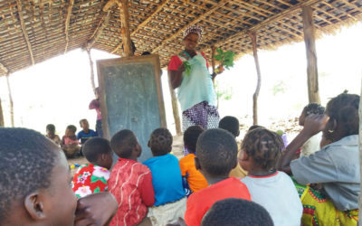 Reconstrução das Escolinhas Comunitárias da Zona de Massamba – Província de Niassa, Moçambique