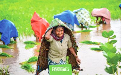 Novo Policy Paper: Desenvolvimento e Segurança alimentar e nutricional: perspetivas e (des)equilíbrios
