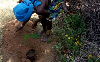 Projeto EKEVELO | Atividades com as comunidades no Virei